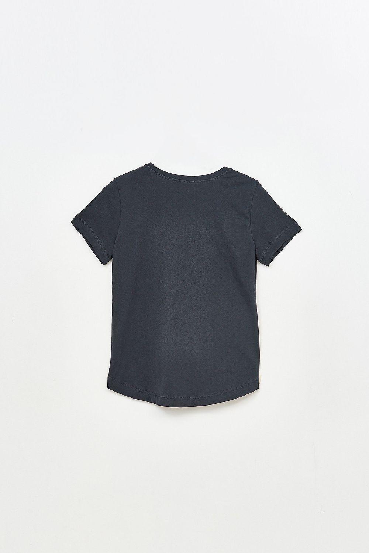 Remera-Cebra-Manga-Corta-Gris-Oscuro--38